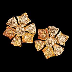 Gold Earrings - Thodu